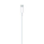 Apple Lightning USB C Kabel